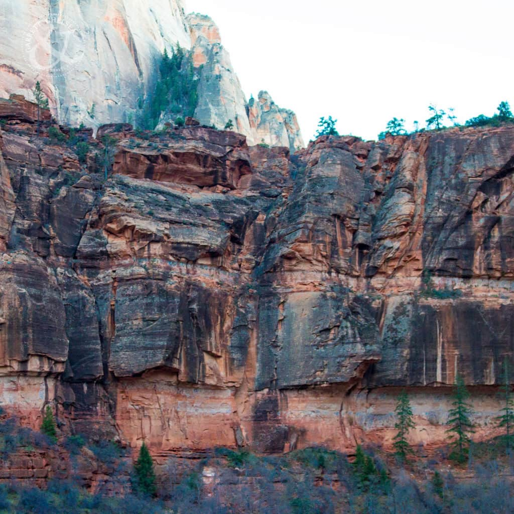 Zion National Park Road Trip from Las Vegas
